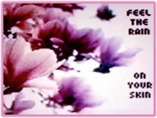 Free feel.jpg phone wallpaper by ihaventaclue