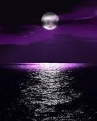 Purple_Moon.jpg
