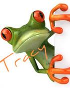 tracy frog orange1.jpg wallpaper 1