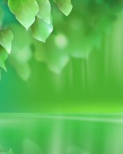 Free Cool Green.jpg phone wallpaper by greyhat