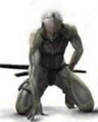 RAIDEN METAL GEAR