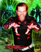 jeffhardywall01111ex.jpg