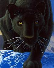 Free Black_Panther.jpg phone wallpaper by teammojo