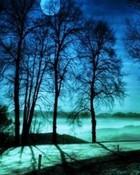 Blue_Night.jpg