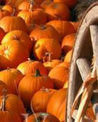 thanksgiving-backgrounds.jpg