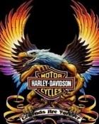 Harley Davidson  wallpaper 1