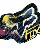 Big Fox Racing Stickers.jpg