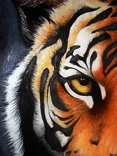 Free tiger1.jpeg phone wallpaper by bullseye275