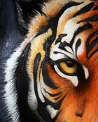 tiger1.jpeg wallpaper 1