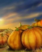 thanksgiving-pumpkins.jpg