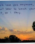 i dont love you.jpg