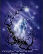 the-unicorn.jpeg