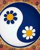 hippyy ying yang
