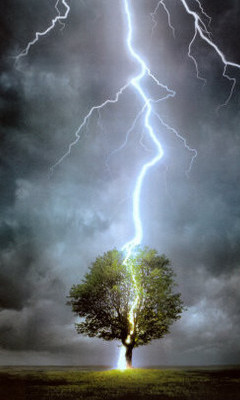 Free Tree with lightning bolt phone wallpaper by woodenstake03