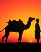 Sunrise at Rajasthan