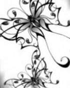 Butterfly.jpg wallpaper 1