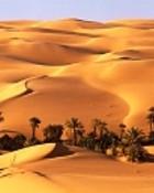 Desert 01 wallpaper 1