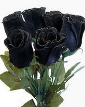 Free black roses images 1.jpg phone wallpaper by dodger