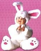 lghr12167+bunny-tom-arma-poster.jpg
