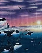 whales-1.jpg wallpaper 1