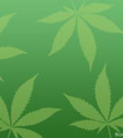 Free weed.jpg phone wallpaper by durffff