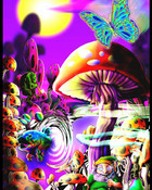 mushroom%20psychedelic.jpg