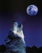 Howling-Wolf.jpg