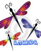 dragonfly-2-1.jpg