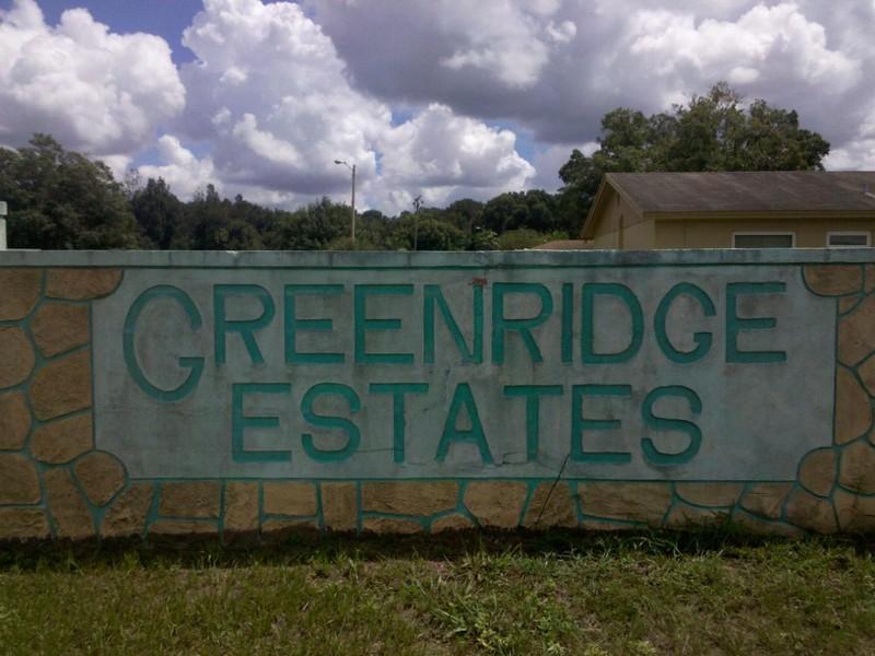 Free GREEN RIDGE ESTATE.jpeg phone wallpaper by kudaluv