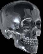 art skull.jpg