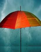 Rain..jpg