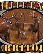 Whitetail Territory rebel flag.jpg wallpaper 1