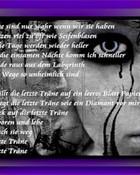 tears 320x240.jpg