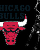 chicago+bulls+wallpapers.jpg wallpaper 1