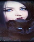 cats 320x240 320x240.jpg