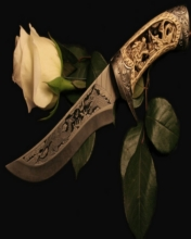 Free Knife & Rose.jpg phone wallpaper by contractplumber