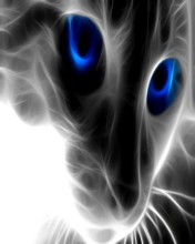 Free Cat Eyes.jpg phone wallpaper by contractplumber