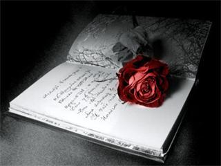 Free Love words 320x240.jpg phone wallpaper by ihaventaclue