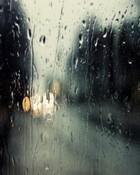 Rain.jpg wallpaper 1