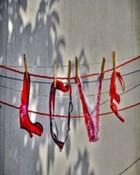 Lingerie Love.jpg
