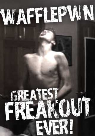 Free greatest freakout ever wafflepwn phone wallpaper by hitman99ohio