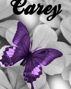 Carey01.jpg