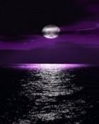 Purple Moon.jpg wallpaper 1