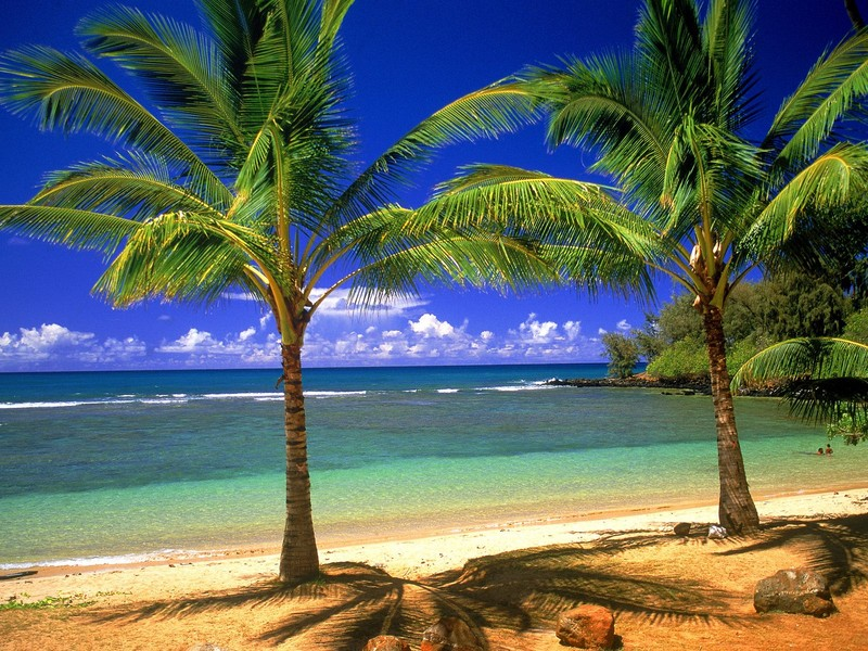 Free tropical lagoon phone wallpaper by sunareline