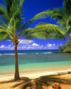 tropical lagoon wallpaper 1