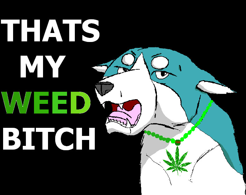 Free thats my weed bitch!.jpg phone wallpaper by KaniHoney282