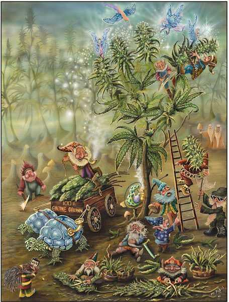 Free gnome-grown.jpg phone wallpaper by socialzombie02