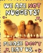 we are not nuggets