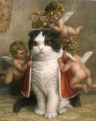 King of the Cats wallpaper 1