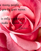free-flower-backgrounds-pretty-in-pink-roses.jpg wallpaper 1